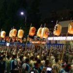 Torikoe Matsuri (Anual festival of the Torikoe Jinja Shrine) ( Tokyo )
