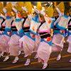 Awa Odori ( Awa Dance Festival ) ( Tokushima )
